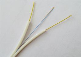 林芝室内皮线光缆